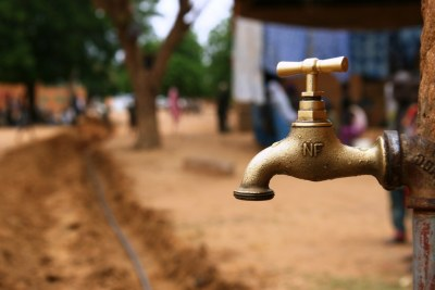 KwaZulu-Natal MEC for Co-operative Governance and Traditional Affairs, Nomusa Dube-Ncube has welcomed the declaration of the drought-stricken province as a disaster area by national government (file photo).