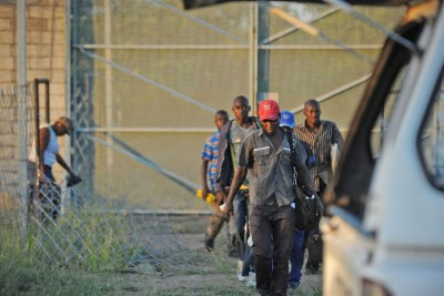 A group of illegal migrants from Zimbabwe (file photo).