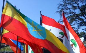 Diaspora Key to Building a Strong Ethiopia