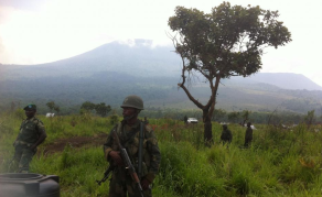 Kidnappings, meurtres dans le parc national des Virunga en RDC