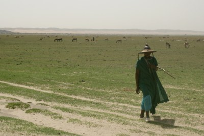 Climate change has meant an increased frequency of drought cycles across the Sahel (file photo).