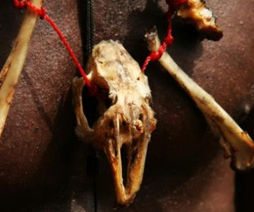 Benin: Voodoo Rituals to Calm the Spirits
