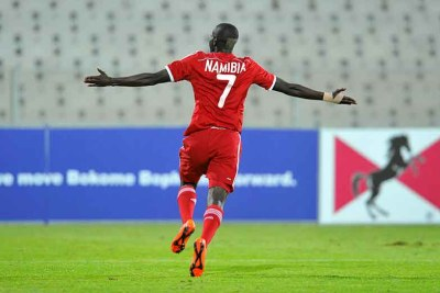Namibian player celebrates (file photo)