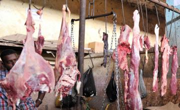 Trafic illégal de viande d'âne en hausse au Mali