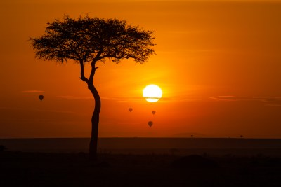 Maasai Mara Reserve (file photo)
