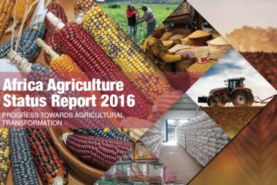 The African Development Bank (AfDB) is one the authors of this year's Africa Agriculture Status Report (AASR), launched on September 6, 2016 in Kenya's capital, Nairobi. The report focuses on Progress toward Agricultural Transformation in Sub-Saharan Africa.