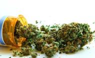 Medicinal Marijuana Could Soon Come to Liberia