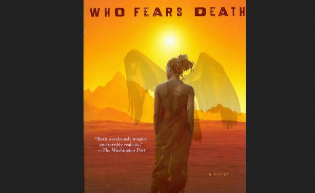 U S  Network Adapts Nigerian Writer's Novel for TV Series