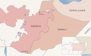 Security Forces Kill 37, Wound 44 in Ethiopia's Oromia Region