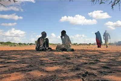 Orahey field outside Wajir Town is a hub of activity.