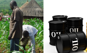 Could Oil Overtake Agriculture as East Africa's Economic Giant?