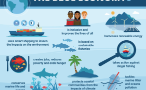 What You Need to Know About Africa's Blue Economy