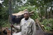 Une couverture forestière pour protéger les moyens de subsistance