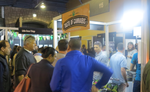 Cannabis Expo Sheds Light on Budding South African Industry