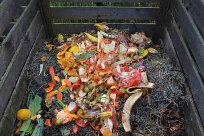Green waste: Bio-organic waste has immense potential for green energy recovery.