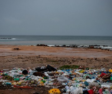 Surfer Launches Dakar's First Zero-Waste Restaurant