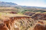 Madagascar - Les oiseaux chantent à nouveau dans la vallée...