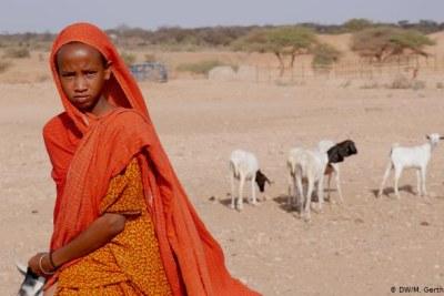 Ethiopia's Somali region.