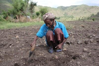 Sheik Yimam Shikuru, a 80-year-old Berebeyu village elder who had floods destroy his farm.
