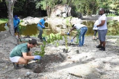 La subvention du Fonds vert pour le climat (GCF) aidera les organisations non gouvernementales des Comores, de Madagascar, de Maurice et des Seychelles à réaliser des projets d'adaptation écosystémiques, également connus sous le nom de solutions naturelles ou fondées sur la nature, au changement climatique. (Ministère de l'environnement)