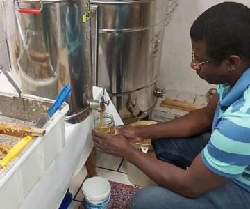 Meet Germany's 'Bee Master' From Sierra Leone