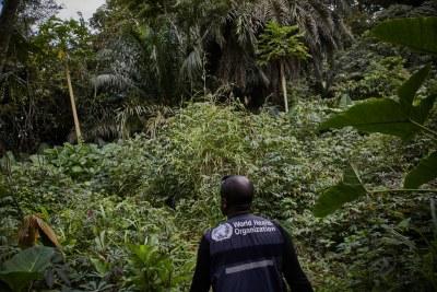 Le virus Ebola est réapparu au Nord-Kivu en République démocratique du Congo
